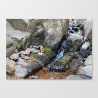 Upper Maxwell Falls in Autumn Canvas Print
