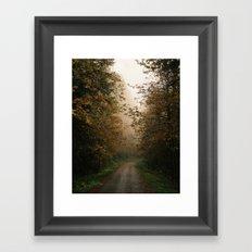 Oregon Fall Road Framed Art Print