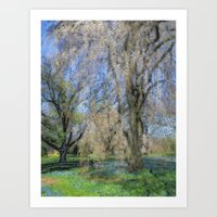 Weeping Cherry Art Print