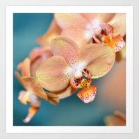 Orchid Ocean Art Print