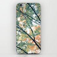 Paint Me Autumn iPhone & iPod Skin