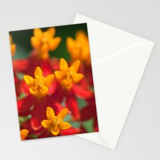 Exotic Flower  411 Stationery Cards
