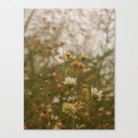Where We Bloom Canvas Print