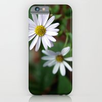 iPhone & iPod Case featuring Daisy by goguen