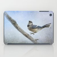 Blue Jay In The Snow iPad Case
