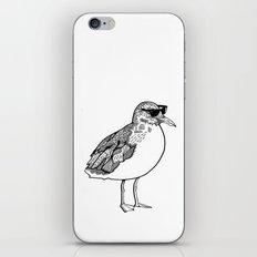 cool Seagull iPhone & iPod Skin