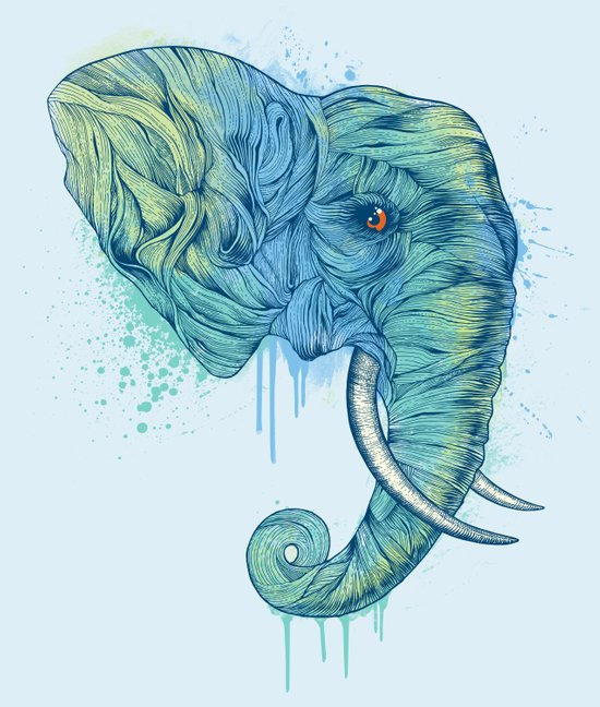 Elephant Portrait Art Print