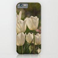 Last Year At The Arboret… iPhone 6 Slim Case