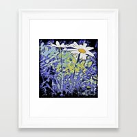 Queens of the meadows Framed Art Print