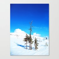 Still winter  (easter in Norway 2013) Canvas Print