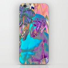 Crinnan iPhone & iPod Skin