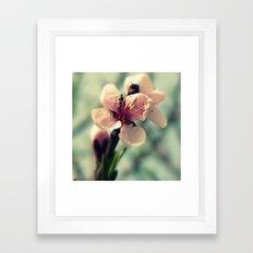 A Cluster of Pastel Petals Framed Art Print