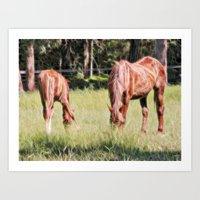 Horses Feeding In A Fiel… Art Print