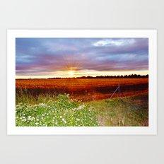 Sunshine field Art Print