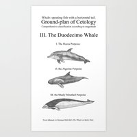 III. The Duodecimo Whale Art Print