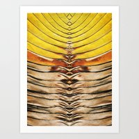 Palm Frond Leaf Macro Art Print