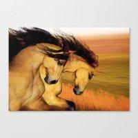 HORSES - The Buckskins Canvas Print