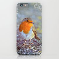 iPhone & iPod Case featuring Robin Christmas by  Alexia Miles photography