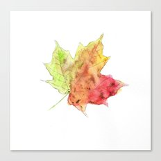 Fall Leaf #2 Canvas Print