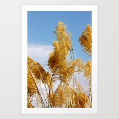 Blue and Gold Art Print