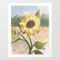 Sunflower Morning Art Print