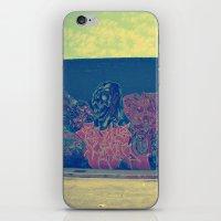 Graffiti II iPhone & iPod Skin