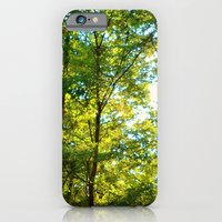 iPhone & iPod Case featuring Fall Trees by Stacy Frett