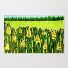 American Prairie Canvas Print