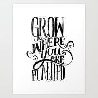 Grow Where You Are Plant… Art Print