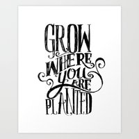 Grow Where You Are Plant… Art Print