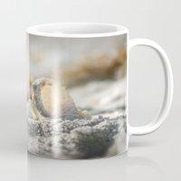 A Shell Mug