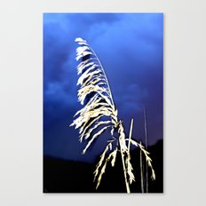 Lonely Oats Canvas Print