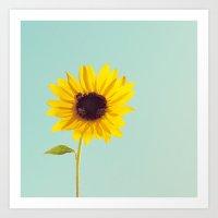 Sunflower. Art Print