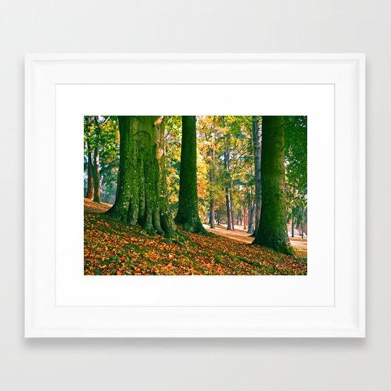 South Park trees Framed Art Print