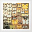 The Butterfly Collection I Art Print