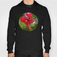 Scarlet Flower Hoody