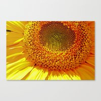 Source Of Joy Canvas Print