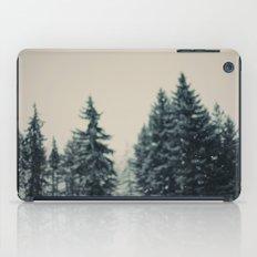 Winter Fancy iPad Case