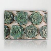Succulent Collection Laptop & iPad Skin
