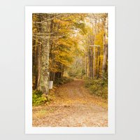 The Unpaved Path - Fall … Art Print