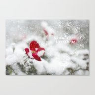 Merry Christmas I Canvas Print