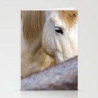 Camargue Horse portrait 6827 Stationery Cards