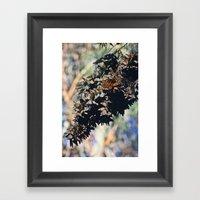 Butterfly Branch Framed Art Print