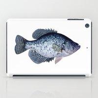 black crappie iPad Case