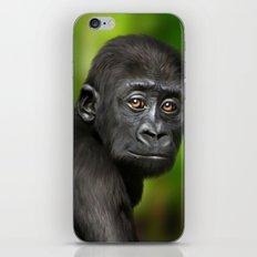 Baby Gorilla iPhone & iPod Skin