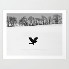 Blackbird on White Landscape Art Print