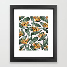 Bird Of Paradise Pattern #society6 #decor #buyart Framed Art Print