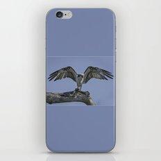 Osprey  iPhone & iPod Skin