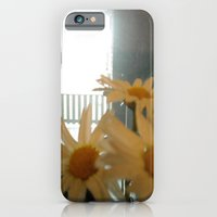 iPhone & iPod Case featuring Chicago Daisies ~ flowers by helene smith photography