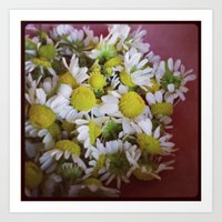 Art Print featuring chamomile by sandra lee russell